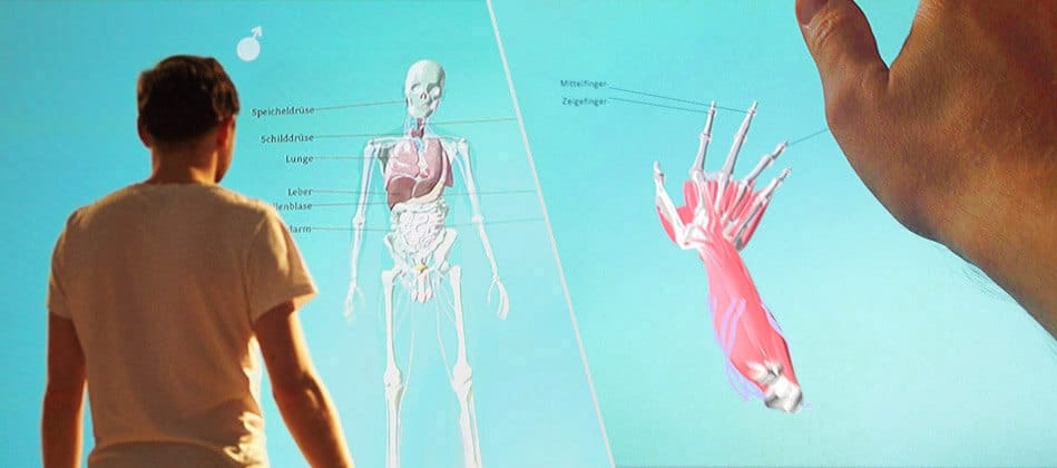 Anatomie-Spiegel \ anatomical hand scan, Interactive Installation